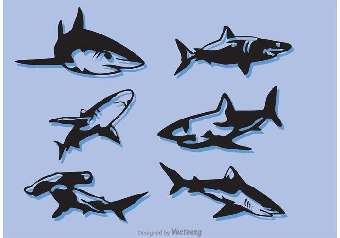 Set Of Shark Vectors