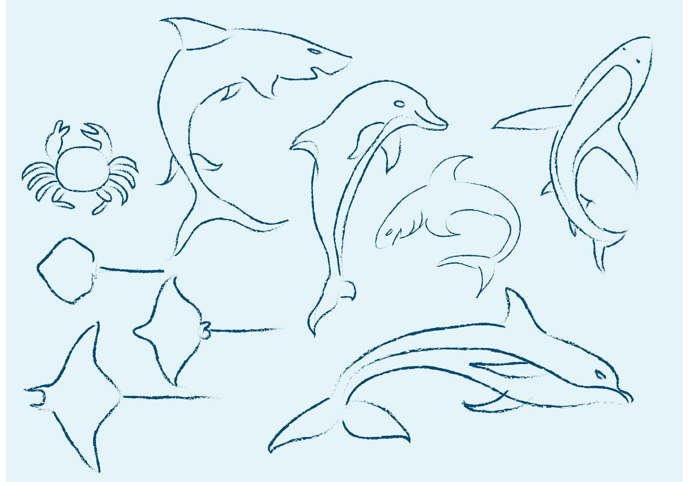 Sea Life Sketches Download Free Vector Art Stock