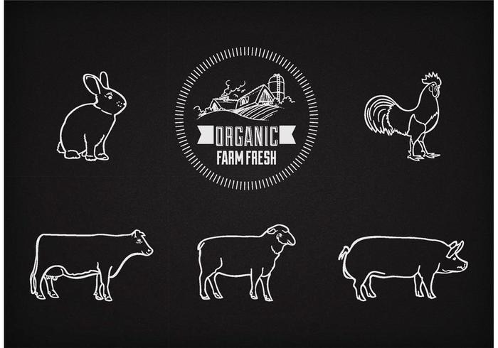 Animaux de la ferme Vector Free On Chalkboard