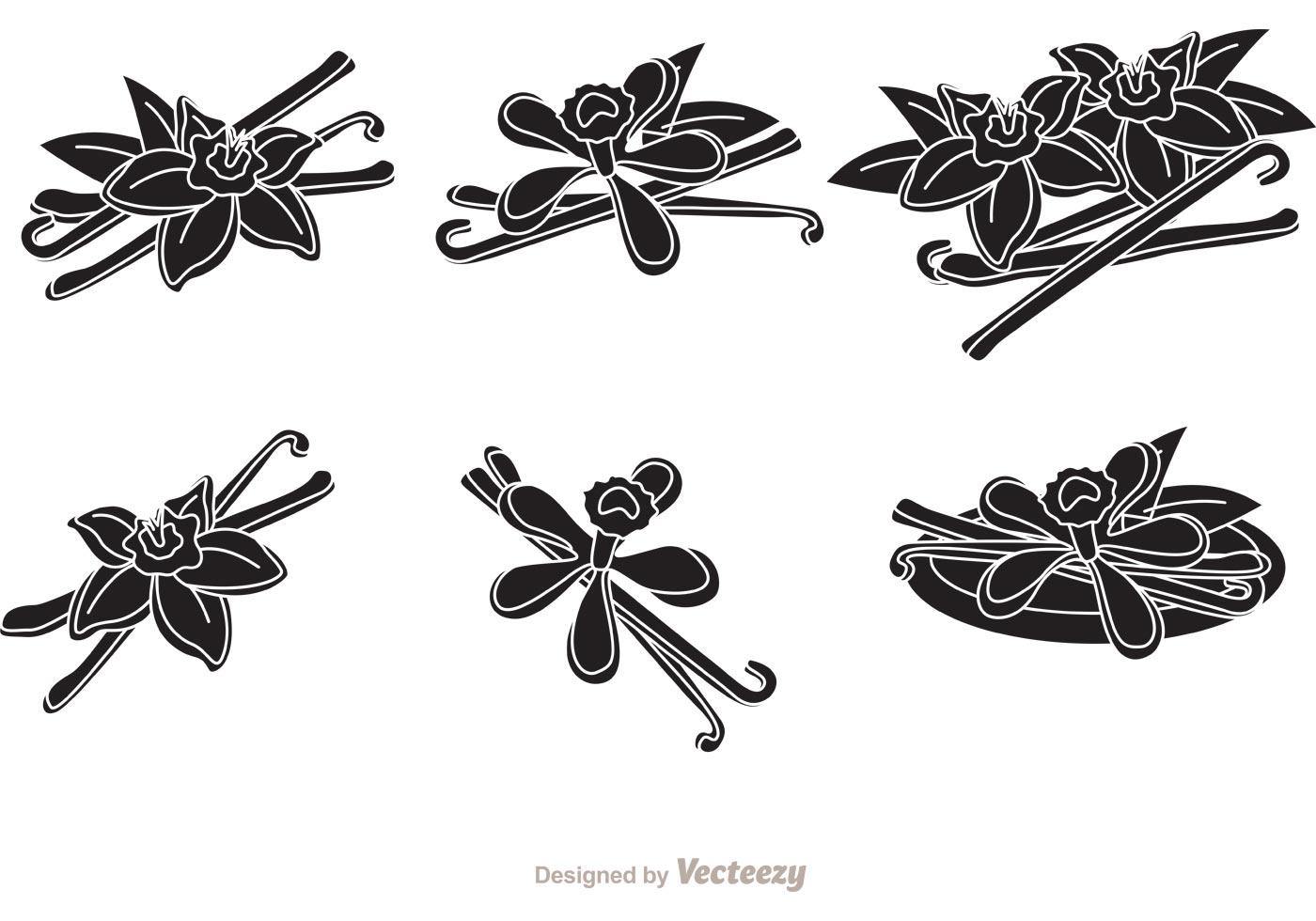Vanilla Flower Silhouette Vectors Download Free Vector Art Stock Graphics