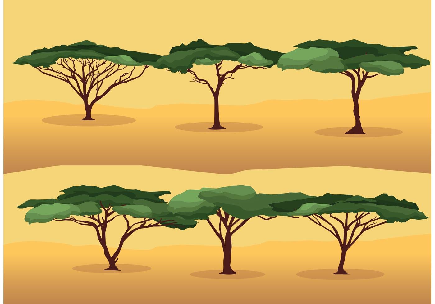 Acacia Tree Vectors - Download Free Vectors, Clipart ...