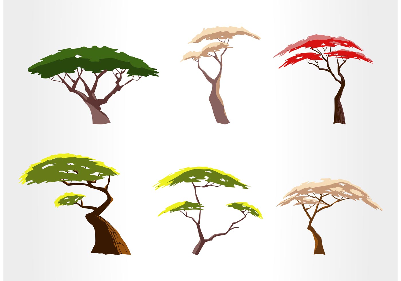 Vector Illustration Tree: Free Acacia Tree Vector Set