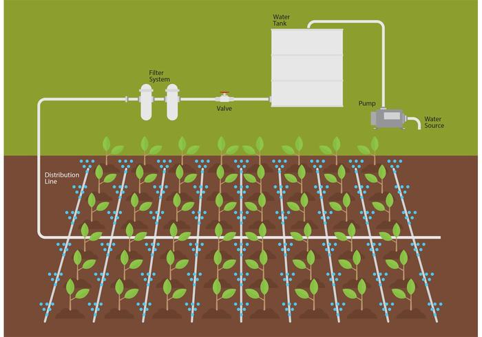 Irrigation Water System Vector
