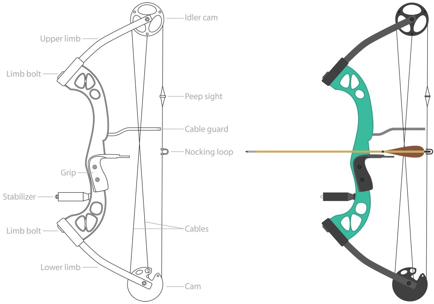 vector force diagram