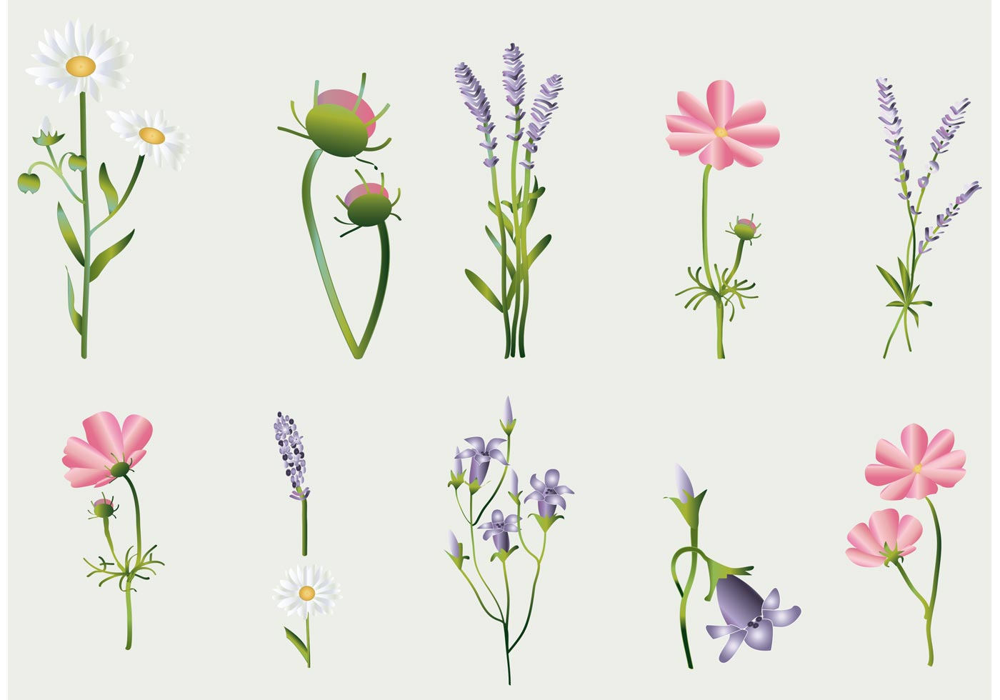 Flower vectors collection download free vector art for Clipart to download for free