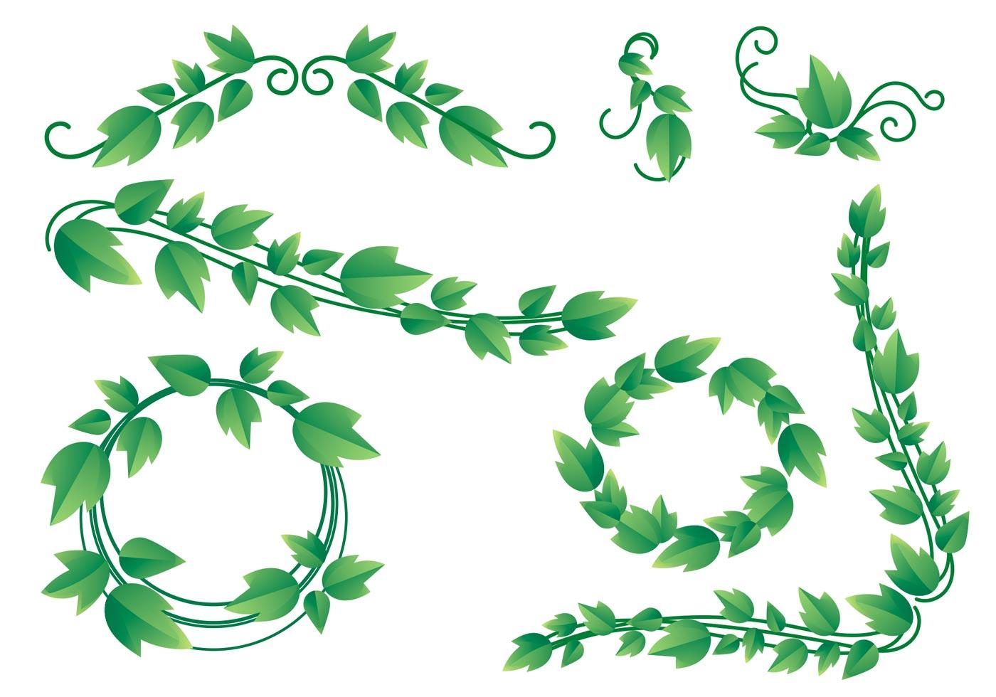 Lovely Ivy Vine Vectors - Download Free Vectors, Clipart ...