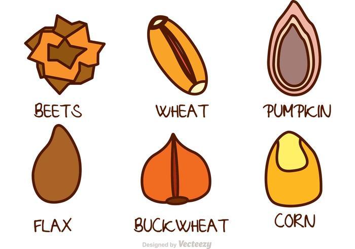 Cartoon Seed Vector Icons