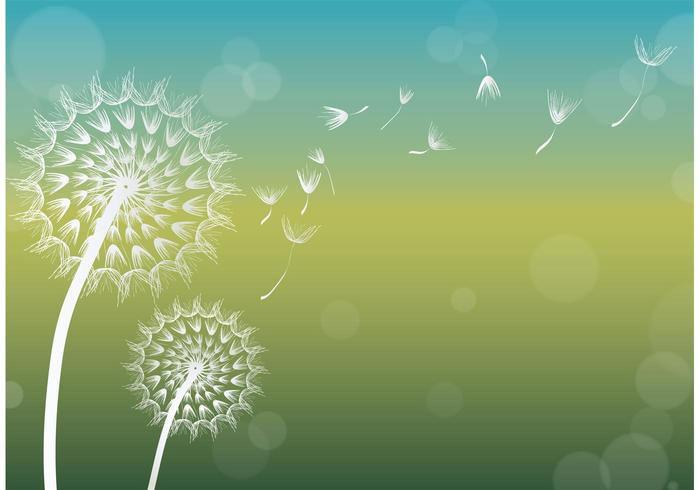 Dandelion Vector Background