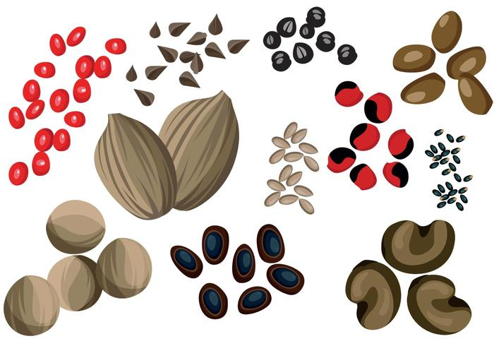 Vectores de semillas