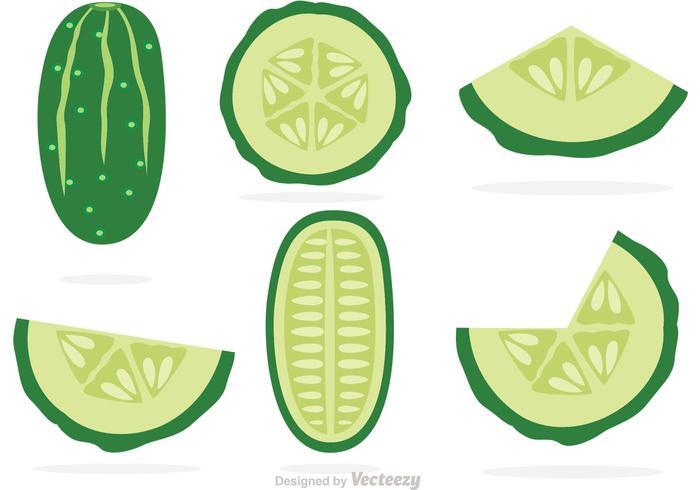 Slices Of Cucumber Vectors