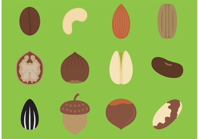 Vettori di semi di cibo