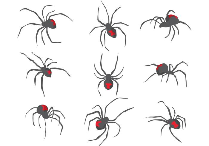 Black Widow Spider Vectors