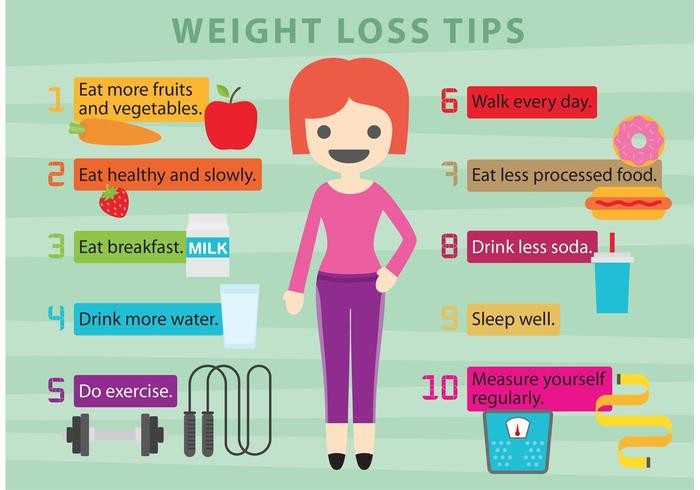 Vector Weight Loss Tips - Download Free Vector Art, Stock Graphics ...