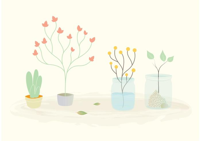 Free Vector Plants in Pots and Jars