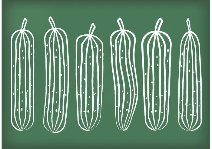 Chalk Drawn Cucumber Vectors