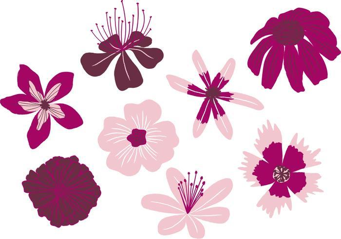 Hand Drawn Blossoms Vectors