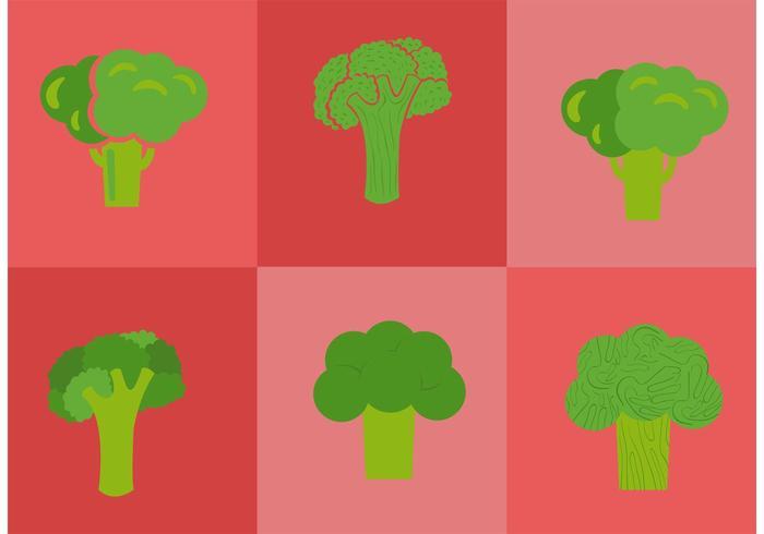 Brócoli Aislado Vectores