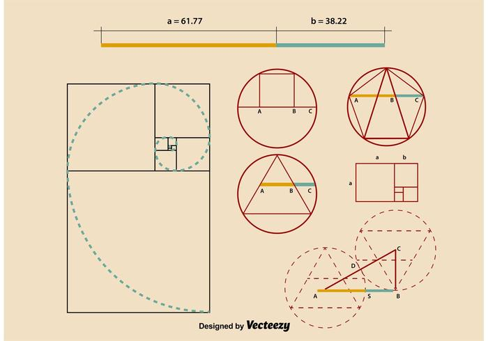 Golden Ratio Proportions vector
