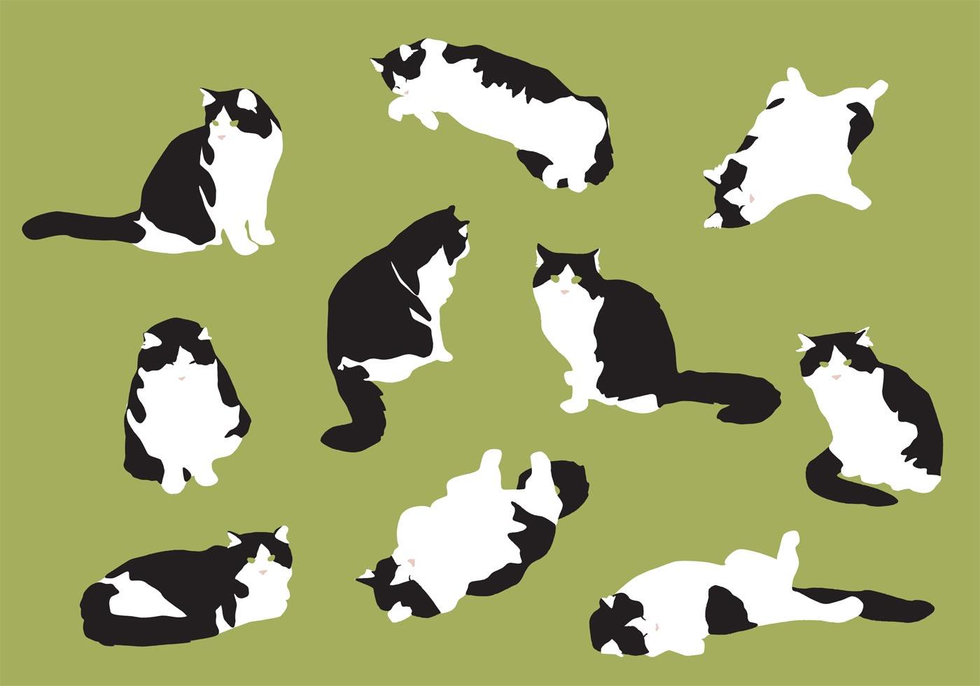 Fat Cat Patterns Custom Design
