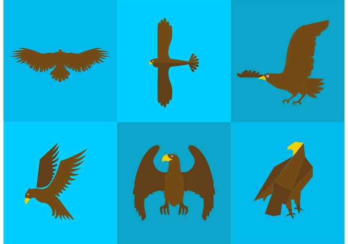 Golden Eagle Vectors