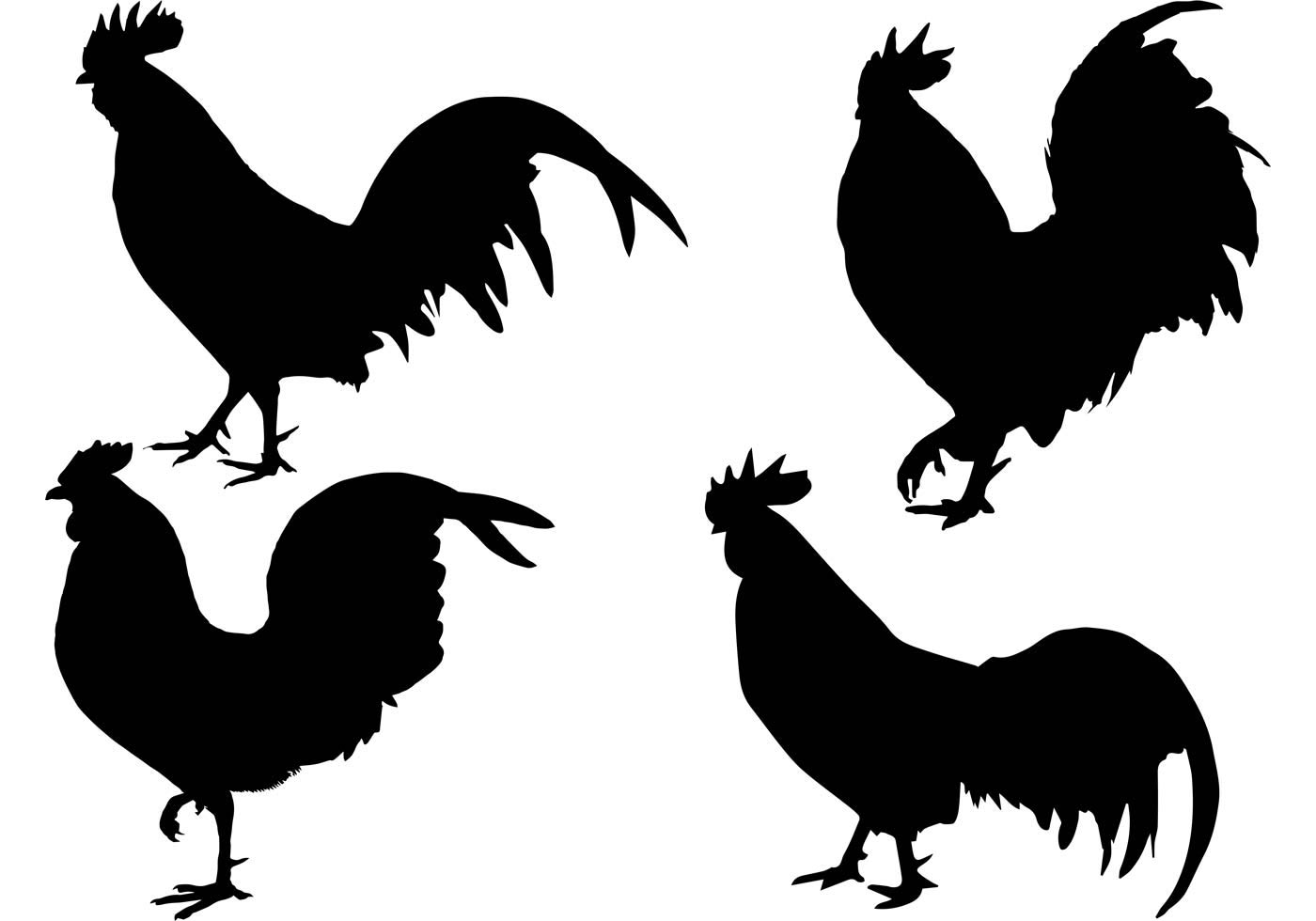 The gallery for --> Rooster Head Silhouette
