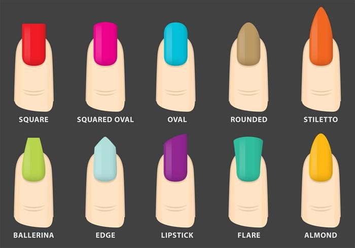 Vector Nails Shapes - Download Free Vector Art, Stock Graphics & Images