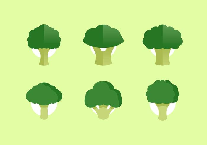 Broccoli Vector Illustrations Free Download
