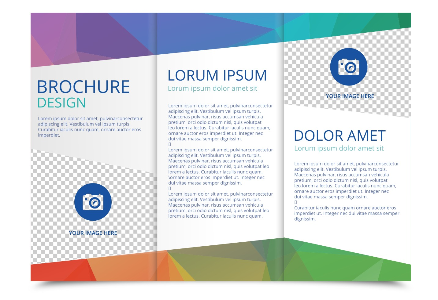 Tri fold brochure vector template download free vector for Templates for brochures