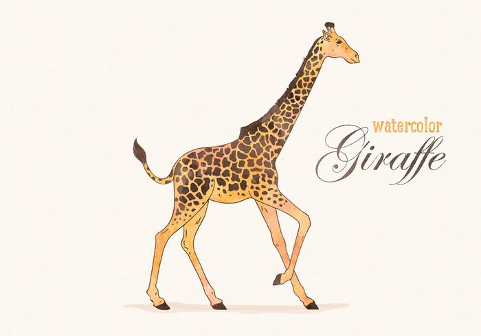 Vector Watercolor Giraffe Illustration