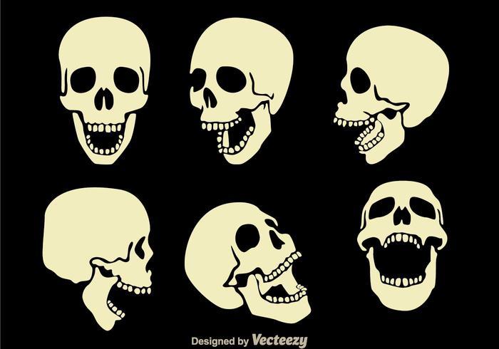 skull vectors 780 free skull vectors rh vecteezy com skull vectors free skull vectors free download