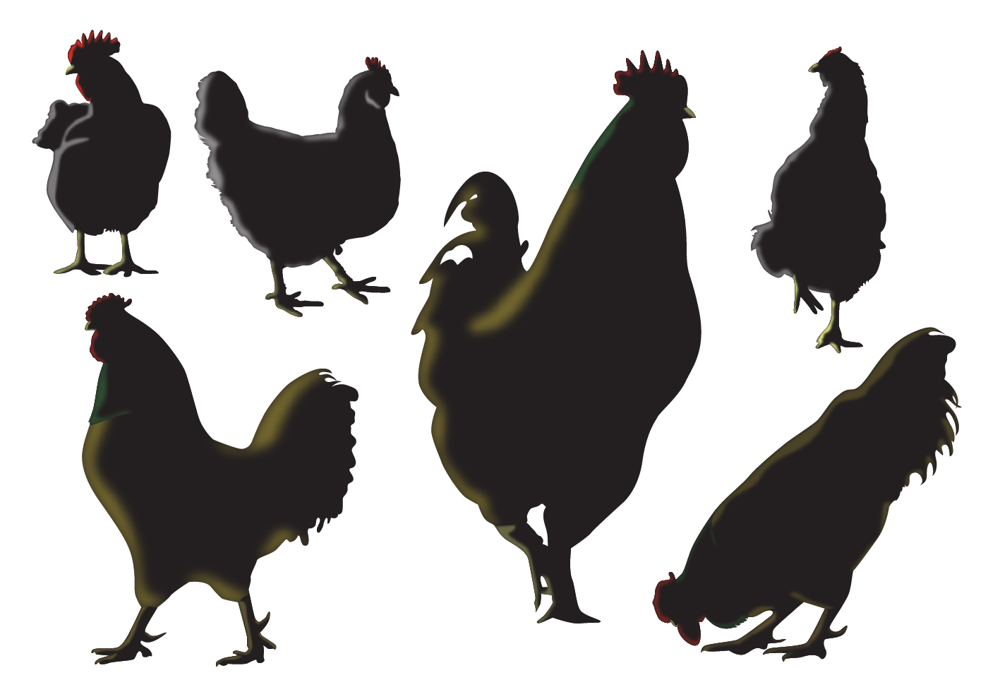 Chicken Svg: Rooster Silhouette Vectors