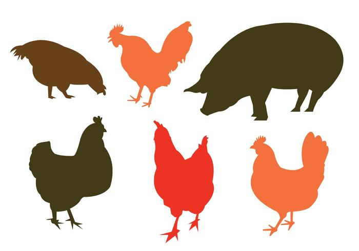 Vector Silhouette of Domestic Animals