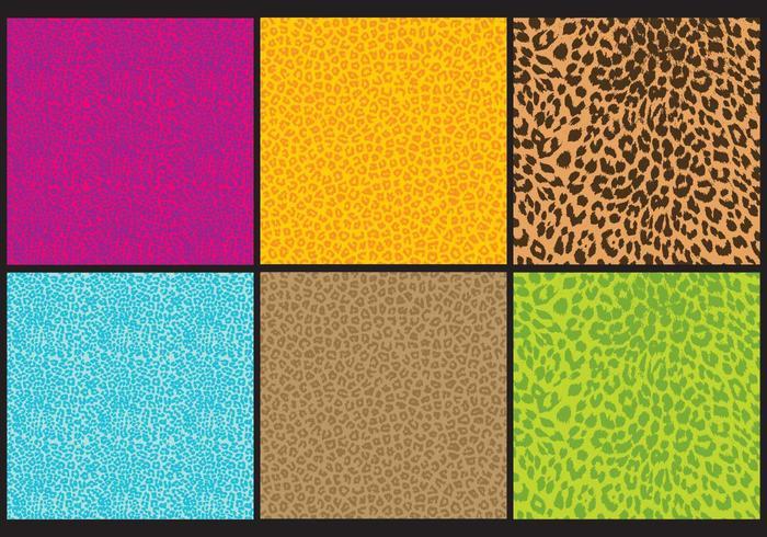 Leopard Print Vectors
