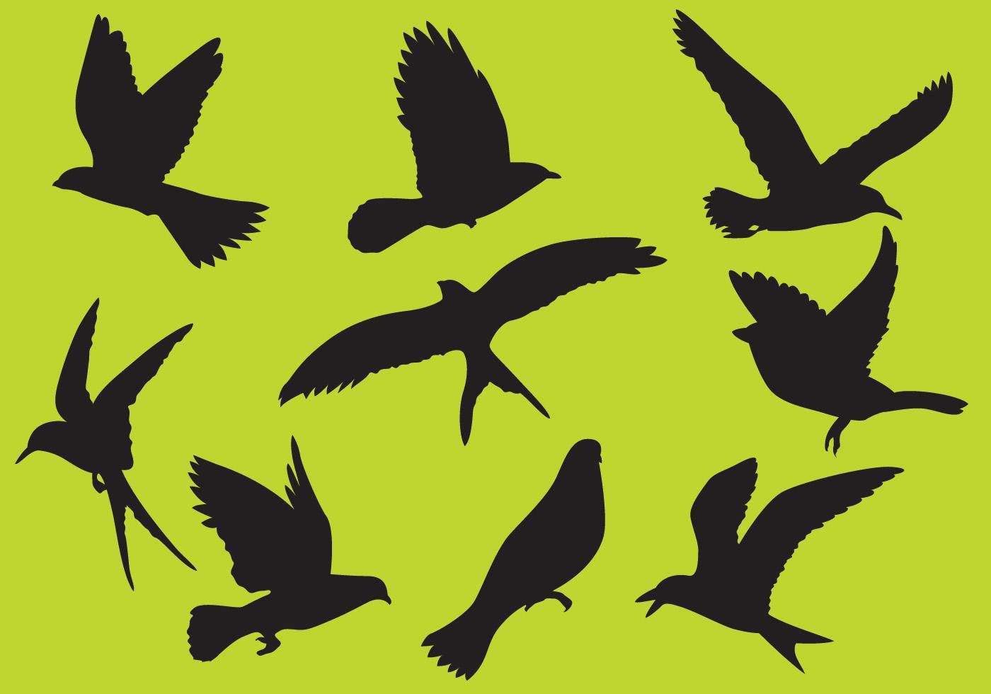 鳥剪影 免費下載 | 天天瘋後製