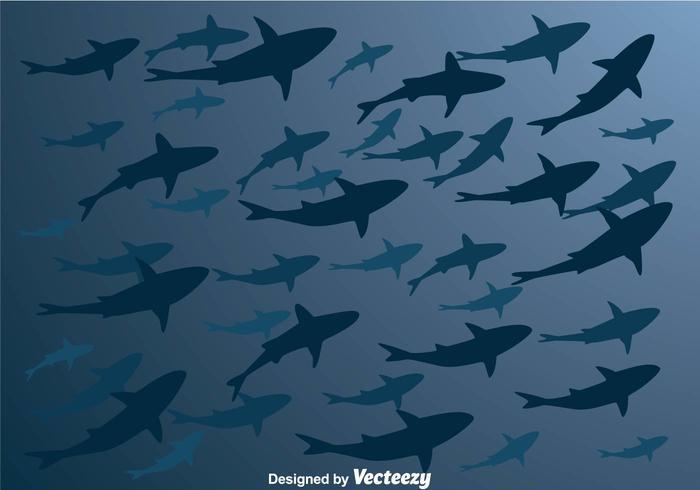 Vector Shark Silhouette From Below