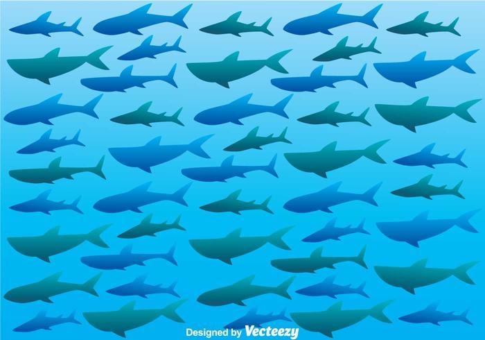 Shark Silhouette On Sea