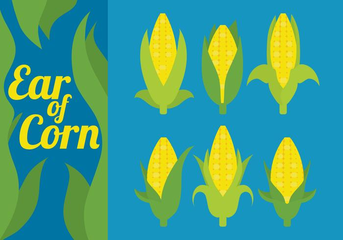 Ear of Corn Vectors