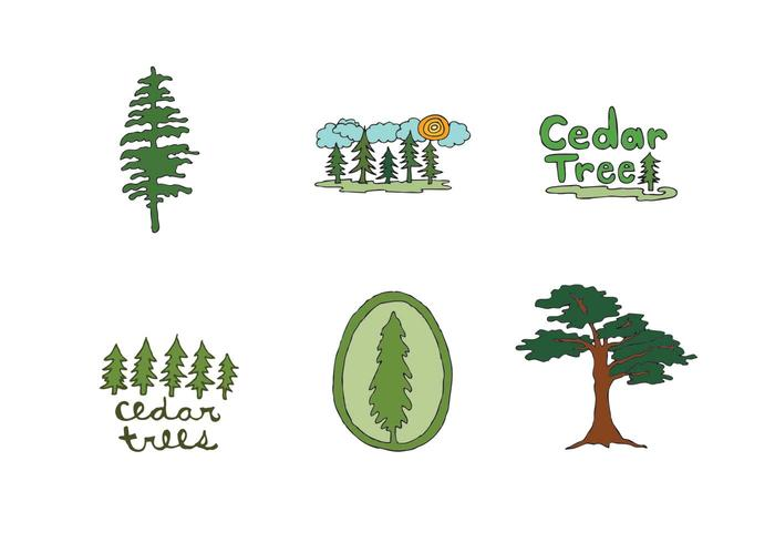 Free Cedar Tree Vector Series