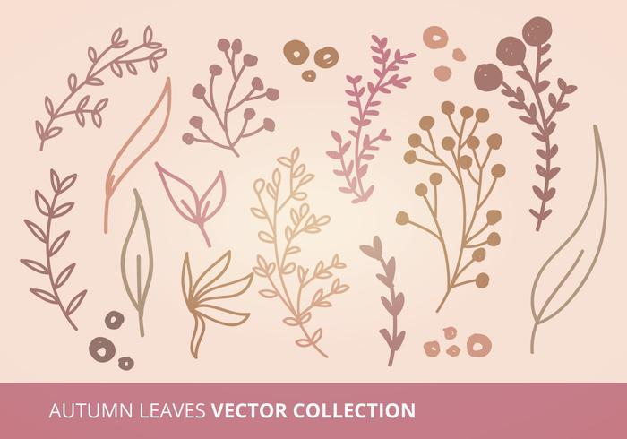 Coleção de vetores de folhas de outono