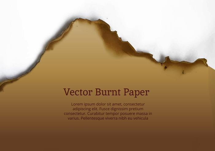 Burnt Paper Edge Vector