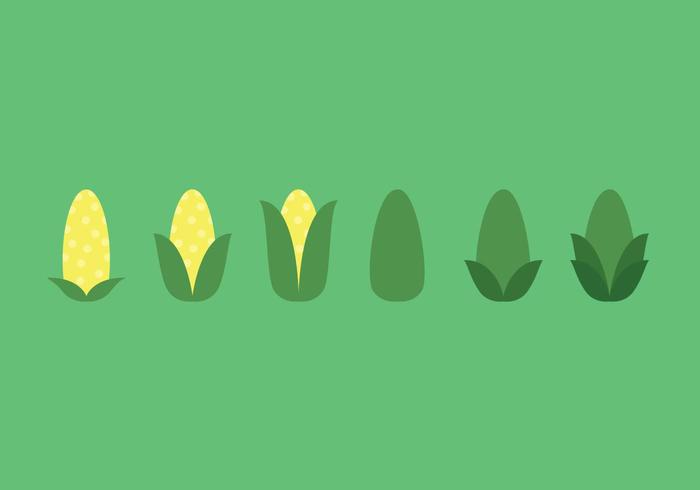 Ear of Corn Vector Sequence