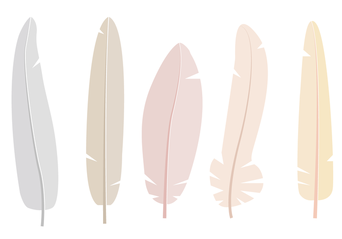 free feathers vector - download free vector art, stock graphics