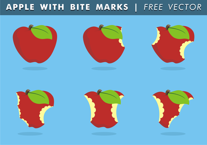 Apple With Bite Marks Vector