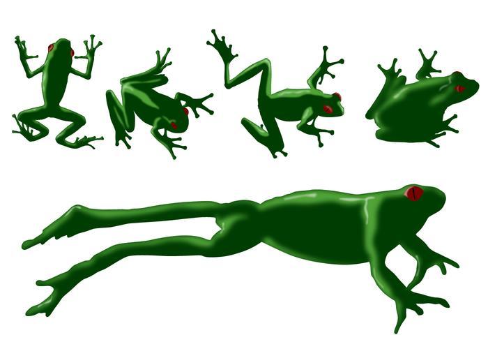 Frog Vectors