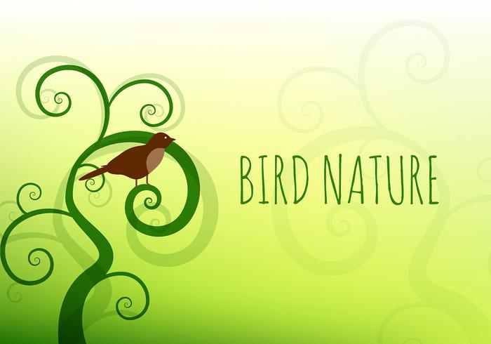 Bird nature vector