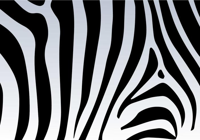 Zebra Print Vector Background