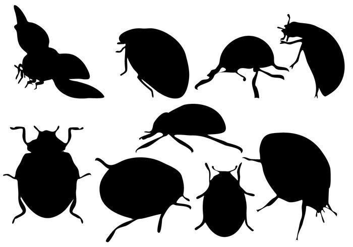Vecteur silhouette libre de coccinelle