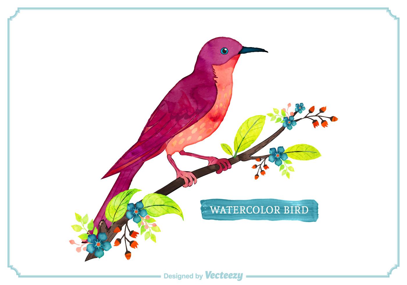 Free Vector Watercolor Bird - Download Free Vector Art ...