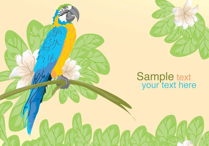 Vector Parrot Posing
