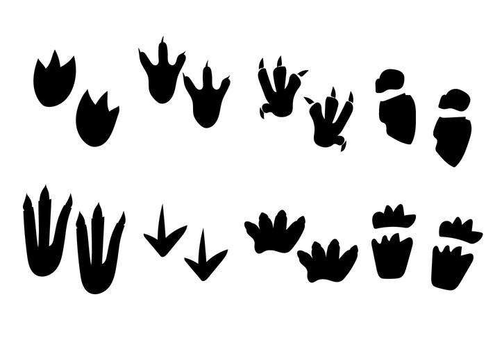 Dinosaur Black and White Footprint Vector
